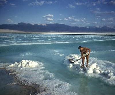 Elevada salinidad del mar muerto.