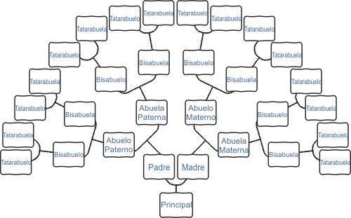 cómo se hace un árbol genealógico 2