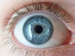 presión ocular