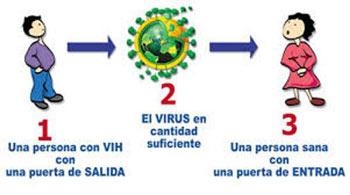 Como-se-Transmite-el-VIH-1