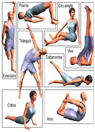 Posturas básicas de yoga