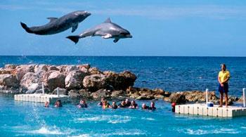 lugares turisticos para visitar jamaica